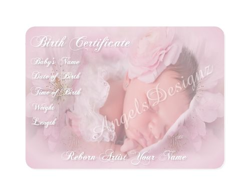 birth certificates Reborn doll artist artist